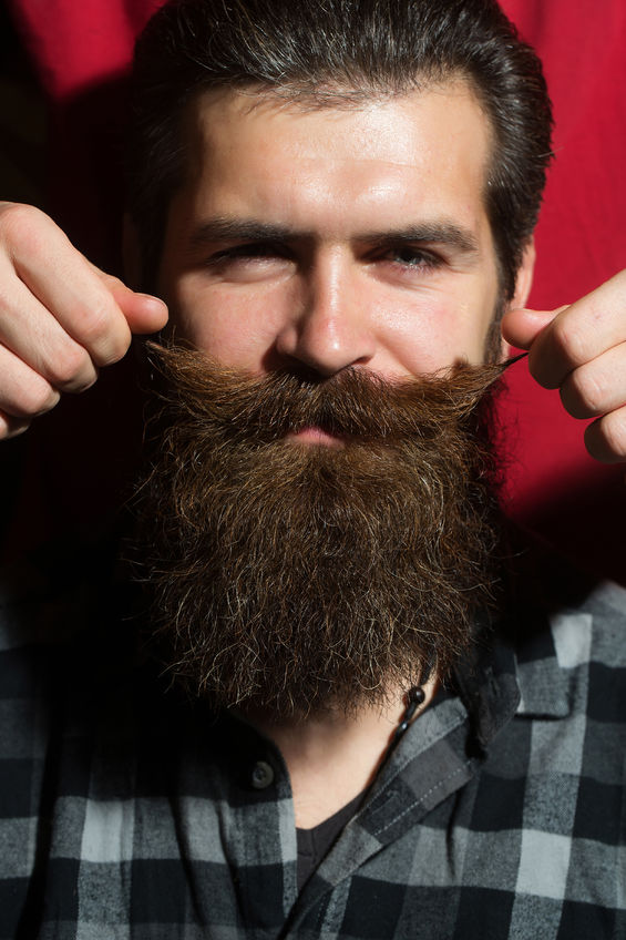 67405406 - male hands twist moustache for bearded man, handsome hipster, with long beard and brunette hair